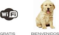 wifi-gratis-perros-permitidos