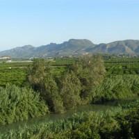 paysage typique de La Ribera